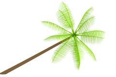 Geef van palm terug vector illustratie