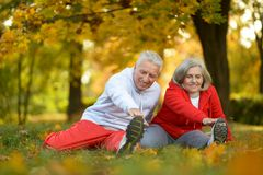 Geeignete ältere Paare Lizenzfreies Stockbild