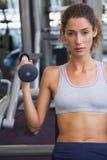 Geeignete Frau, welche die Gewichtsmaschine für ihre Arme verwendet Lizenzfreie Stockfotografie