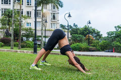 Geeignete junge Dame, die draußen, tuend ausarbeitet, Übungen und Stellung in der abwärtsgerichteten Hundeyogahaltung ausdehnend Stockfotos