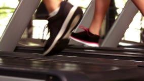Geeignete Leute, die auf Tretmühlen laufen stock video