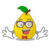 Geek bunch cartoon of juicy yellow quinces fruits. Vector illustration royalty free illustration