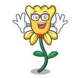 Geek daffodil flower character cartoon. Vector illustration royalty free illustration