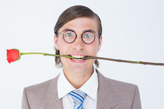 Geeky businessman offering bunch of roses Stock Photography
