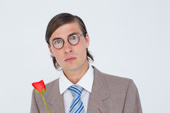 Geeky businessman offering a rose Royalty Free Stock Photos