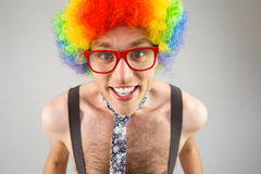 Geeky hipster in afro rainbow wig Stock Photography