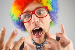 Geeky hipster in afro rainbow wig. On grey background Stock Photos