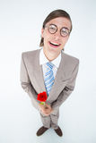 Geeky lovesick hipster holding rose Royalty Free Stock Photography