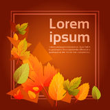 Geel Blad Autumn Fall Banner Abstract Background Royalty-vrije Stock Afbeeldingen