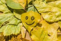 Geel blad met een beeld van een gelukkig gezicht Stock Foto