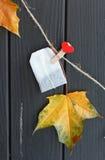 Geel bladeren en theezakje op wasknijpers Royalty-vrije Stock Foto