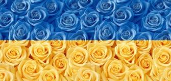 Geel blauw rozen naadloos patroon Stock Afbeeldingen