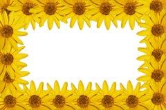 Geel bloemenframe Royalty-vrije Stock Foto