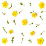 Geel bloemenpatroon op witte achtergrond Vlak leg Stock Foto