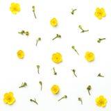 Geel bloemenpatroon op witte achtergrond Vlak leg Stock Foto's