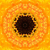 Geel Concentrisch Bloemcentrum. Mandala Kaleidoscopic-ontwerp stock foto