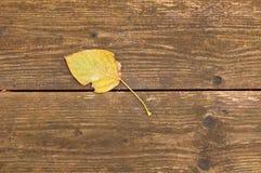 Geel de herfstblad op een achtergrond van houten bank Royalty-vrije Stock Afbeeldingen