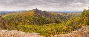 Geel de herfstbos Stock Afbeeldingen