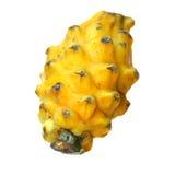 Geel draakfruit Stock Fotografie