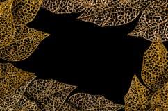Geel en gouden bladkader Stock Foto's