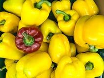 Geel en groene paprika in supermarkt Stock Afbeeldingen