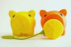 Geel en sinaasappel piggies met gele citroen Royalty-vrije Stock Afbeeldingen