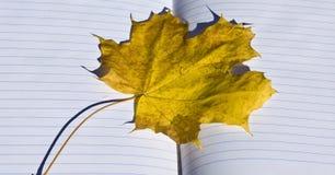 Geel esdoornblad op notitieboekje stock fotografie
