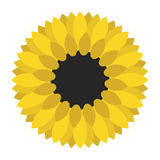 Geel geïsoleerd zonnebloemclose-up Stock Illustratie