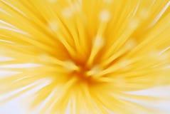Geel gebakjeonduidelijk beeld Stock Foto's