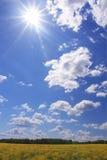Geel gebied en blauwe hemel Royalty-vrije Stock Foto's