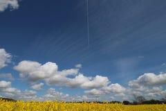 Geel gebied en witte wolken stock afbeeldingen