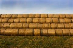 Geel goud gedrukt stro in balen, achtergrond royalty-vrije stock afbeelding