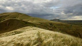 Geel gras op een achtergrond van heuvels en een bewolkte hemel Stock Afbeelding