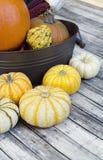 Geel Gurde en oranje pompoenen voor dankzegging Royalty-vrije Stock Foto's