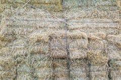 Geel hooibergpatroon Stock Afbeeldingen