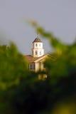 Geel huis in midden van wijngaarden Stock Foto's