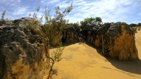 Geel kalksteen bij Aap Mia stock video