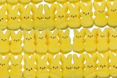 Geel konijntjessuikergoed Royalty-vrije Stock Foto