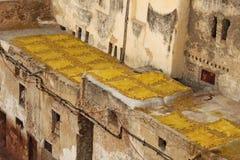 Geel leer die op zon i looierij in Fez drogen Stock Afbeelding