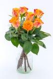 Geel met rode rozen in een geïsoleerde vaas Stock Fotografie