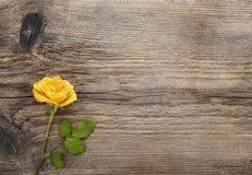 Geel nam op houten achtergrond toe Royalty-vrije Stock Afbeelding