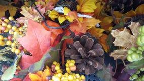 Geel, Oranje, Dalingsbladeren Royalty-vrije Stock Foto's