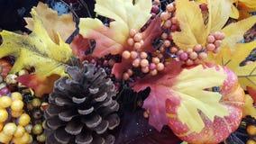 Geel, Oranje, Dalingsbladeren Stock Afbeelding