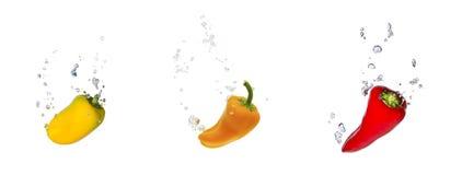 Geel, oranje en rood capsicum in water Stock Fotografie