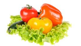 Geel peper, peterselie en salade geïsoleerd blad royalty-vrije stock afbeelding