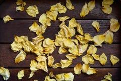 Geel verwelkte toenam bloemblaadjes Royalty-vrije Stock Afbeeldingen