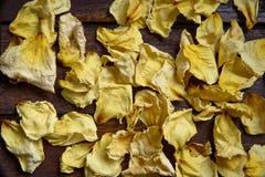 Geel verwelkte toenam bloemblaadjes Stock Fotografie