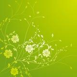 Geel wild bloem en wijnstokkenpatroon vector illustratie