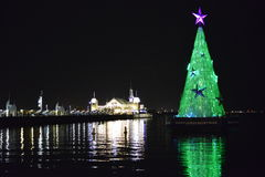 Geelong Green Christmas tree Royalty Free Stock Image