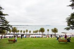 2016 Geelong-Heropleving Royalty-vrije Stock Foto